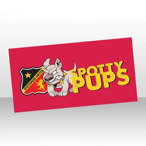 PUPS-beach-towel